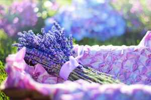 Guiding Young Goddesses: Ritual Cleansing Bath